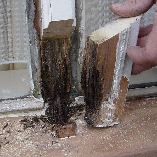 hoe houtrot repareren